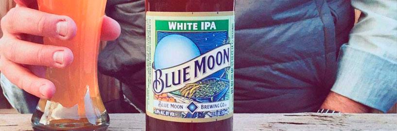 Conheça as White IPAs: cervejas refrescantes e lupuladas