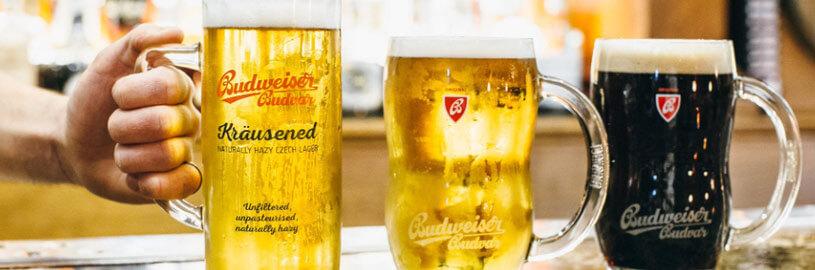 Czechvar – a tradicional cerveja da República Tcheca