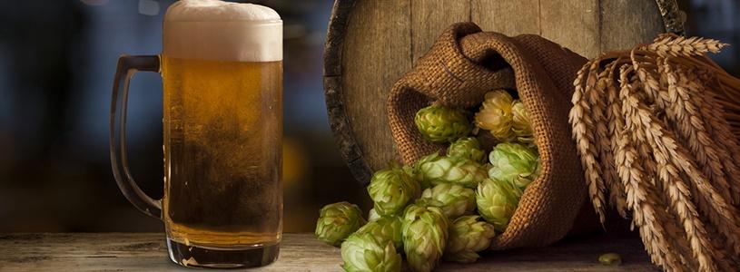 As melhores cervejas para a primavera