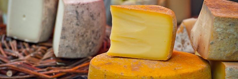 Como maturar queijo com o bagaço do malte?