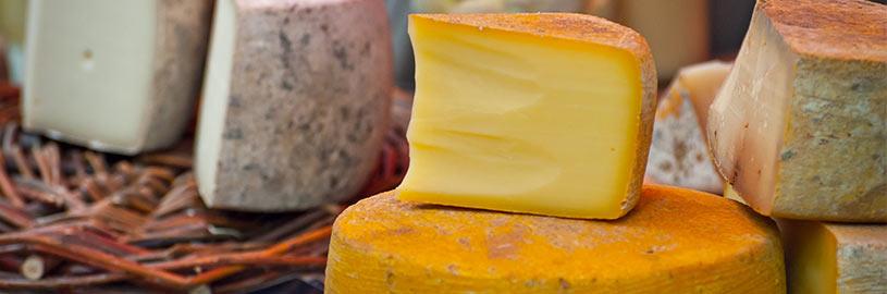 Que tal conhecer museus de queijos?