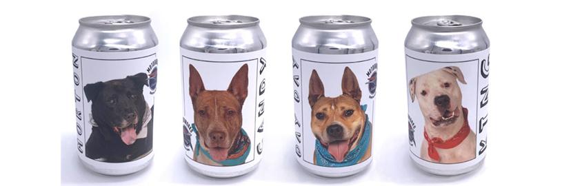 Cervejaria estampou suas latas com fotos de cães para incentivar adoção